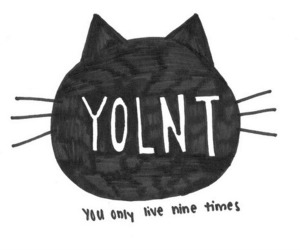 cat, yolo, and yolnt image