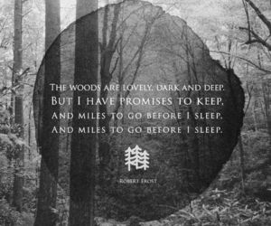 robert frost, dark, and quote image