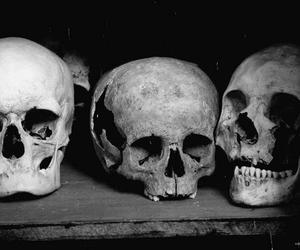 skull, black and white, and b&w image