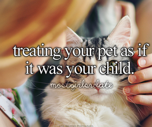 pet, cat, and child image