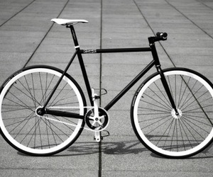 fixed-gear image