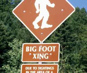 big foot, funny, and sign image