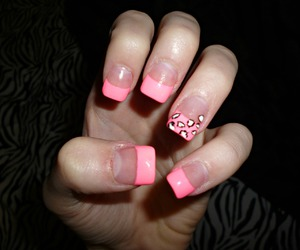 animal print, pink, and girly image