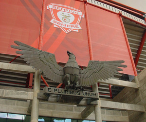 luz, slb, and benfica image