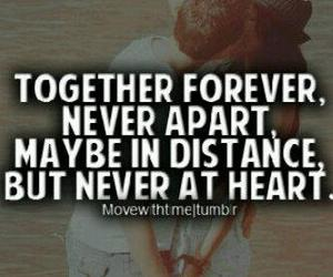 quote, forever, and love image