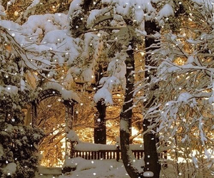 christmas, nice, and photography image