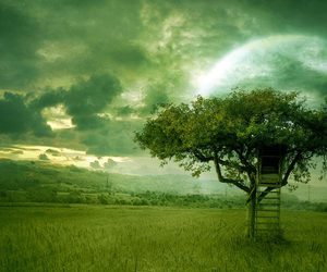 Dream, tree, and green image