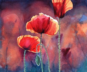paint, purple, and poppies image