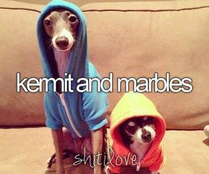 marbles, jenna marbles, and kermit image