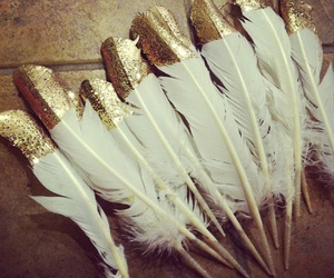 feather, white, and glod image