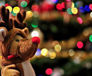 christmas, light, and reindeer image
