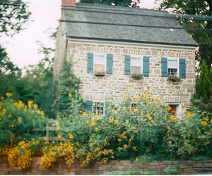 house, flowers, and vintage image