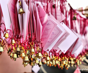 row, of pink blessing card, and for thai king image