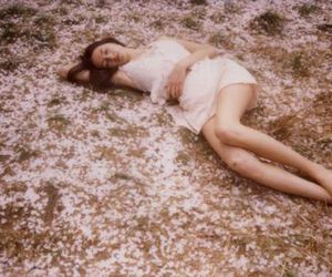 girl, photography, and petra collins image