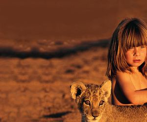 baby lion, love nature, and eyes image
