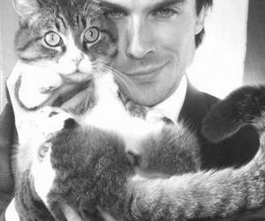 cat, ian somerhalder, and sexy image