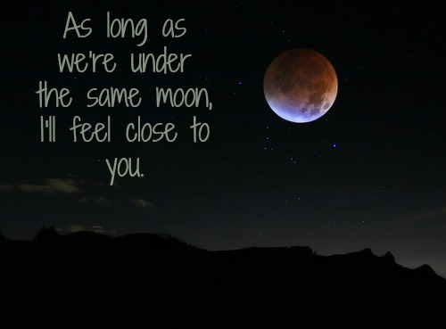 Love Moon Photography Quote Inspiring Picture On Favimcom