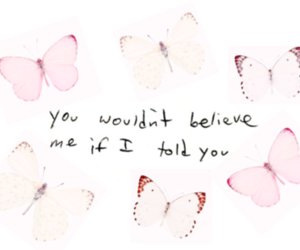 butterfly, pink, and quote image