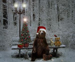 bear, christmas, and animal image