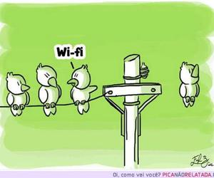 bird, funny, and wi-fi image
