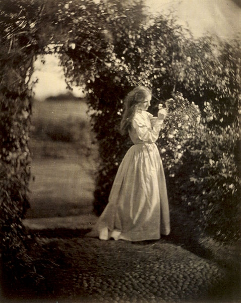 julia margaret cameron and victorian image