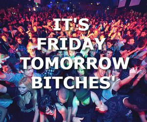 friday, party, and bitch image