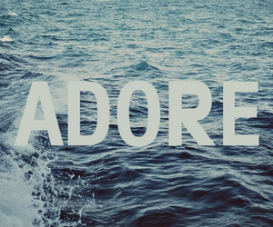 adore, sea, and text image