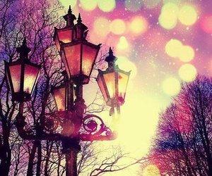 light, tree, and pink image