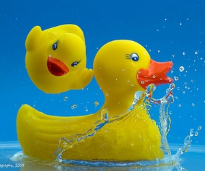 bath time, float, and toy image