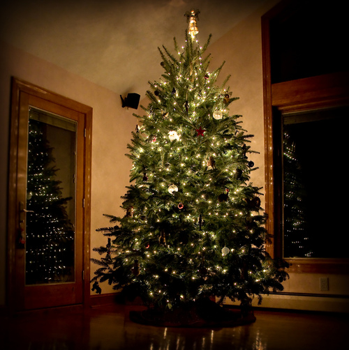 Christmas Tree Tumblr.Christmas Tree Tumblr Shared By Rose On We Heart It