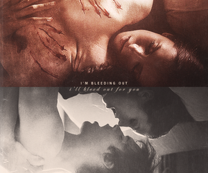 couple, ian somerhalder, and elena gilbert image