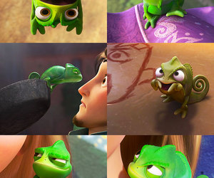 pascal and tangled image