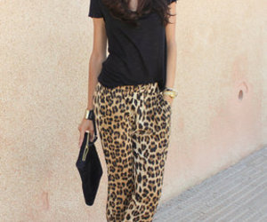 animal print and outfit image
