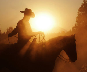 cowboy, horse, and sunset image