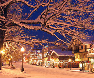 beautiful, snowy, and christmas image