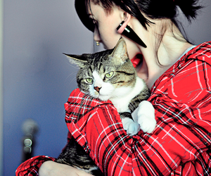 cat, girl, and Plugs image