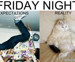 friday, funny, and night image