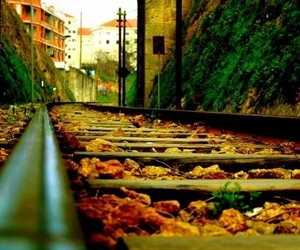 atmosphere, autumn, and rails image