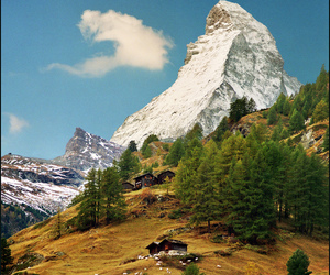 Alps, fall, and flock image