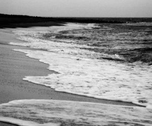 shore, ocean, and beach image