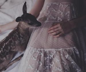 girl, deer, and vintage image