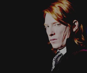 harry potter and bill weasley image