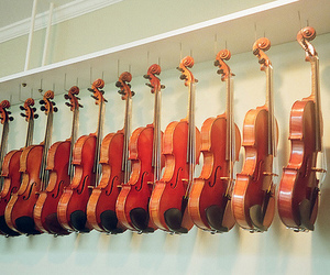 violin, photography, and music image