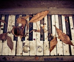 leaves, piano, and rings image