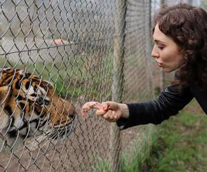 regina spektor and tiger image