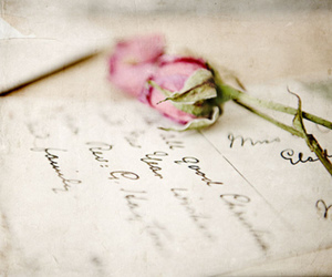 rose, Letter, and pink image