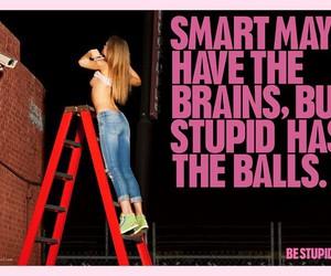 stupid, diesel, and smart image