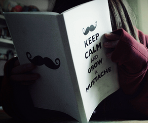 funny, keep calm, and mustache image