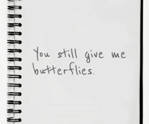 awn, butterflies, and couple image