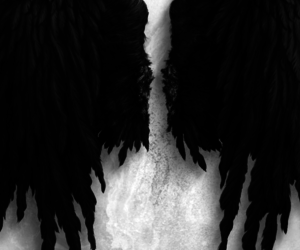 angel, Devil, and wing image